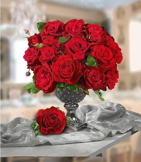 """Delbard Parfum-Rose """"Le Rouge et le Noir®"""",1 Pflanze"""