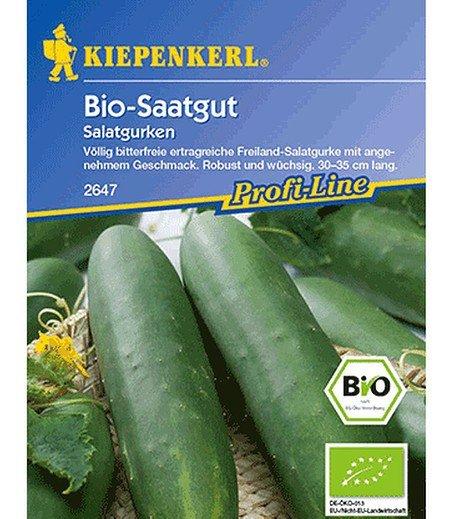 Kiepenkerl BIO-Gurke, Salatgurke,1 Portion