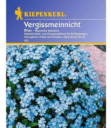 Kiepenkerl Vergissmeinnicht 'Blau',1 Portion