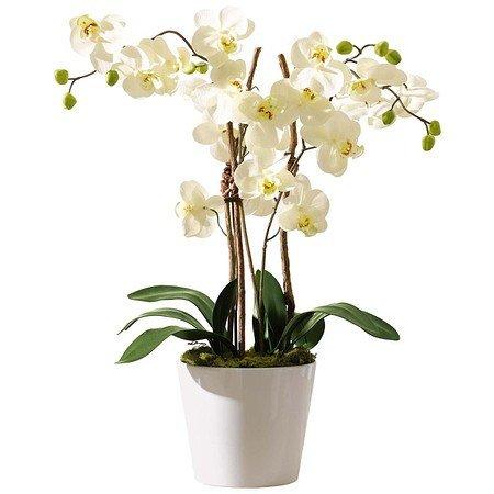 Kunstpflanze Orchideentopf Elegance