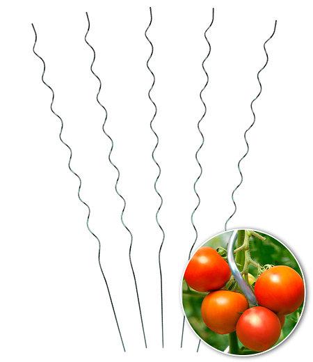 Tomaten-Spiralstab 110 cm 5er-Set,1 Set