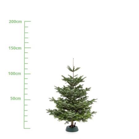 Weihnachtsbaum M (ca. 125 cm)