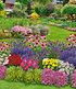 Mein schöner Garten Duftendes Staudenbeet, 22 Pflanzen (1)