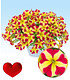 "Petunie ""Amore® Queen of Hearts"",3 Pflanzen (2)"