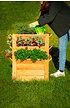 Westmann Premium Hochbeet (4)